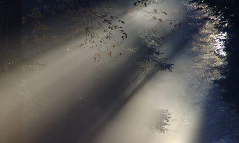 cropped-sunbeam-76825_1280.jpg