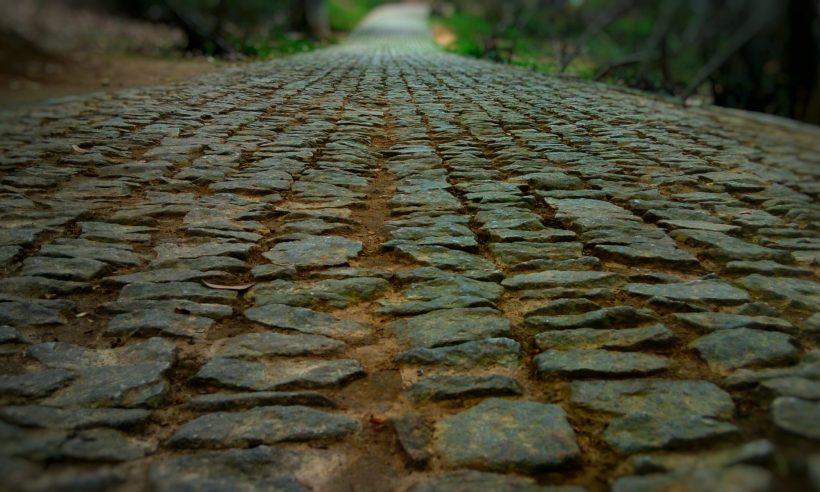 cropped-lane-1362411.jpg