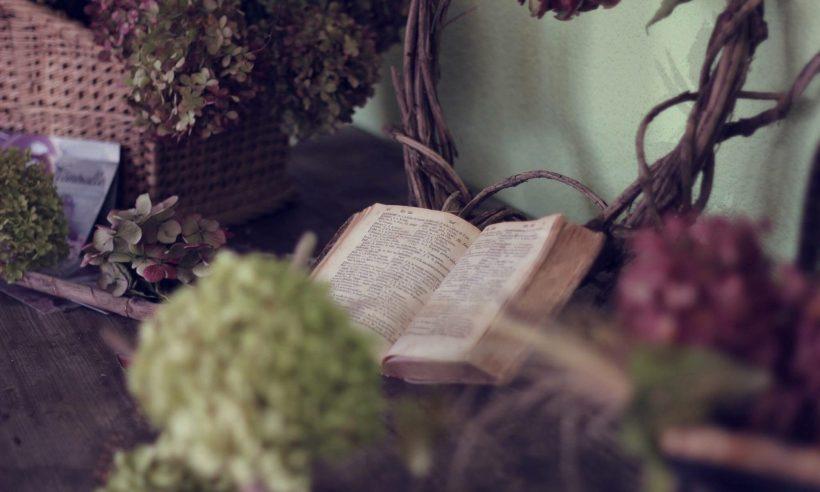 cropped-book-1210027_1920.jpg